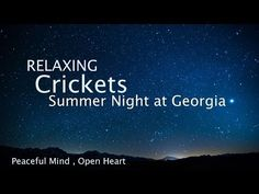 Sleep and Relaxation Nature Sounds, Crickets Summer Night [ Sleep Music ] - YouTube