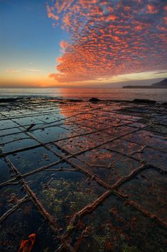 This sedimentary rock in Tasmania fractured into unusual tile-like squares millions of years ago. The center of each tile erodes faster than the joints or edges, which over time become mini ridges. Shot at dawn by JJ Harrison.