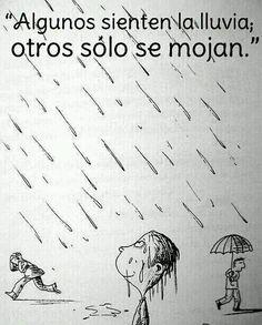 Algunos sienten la lluvia; otros sólo se mojan