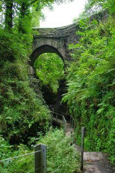 Lydford Gorge--Devon.