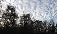 """December, Outdoors"" by John Updike"