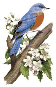 Missouri State Bird & Flower Custom Designed by needleworkshop, $6.50