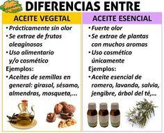 diferencia entre aceites vegetales esenciales Diy Beauty, Beauty Skin, Beauty Hacks, Rose Oil, Facial Care, Natural Cosmetics, Medicinal Plants, Handmade Soaps, Doterra