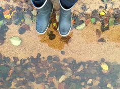 I sjön November-14