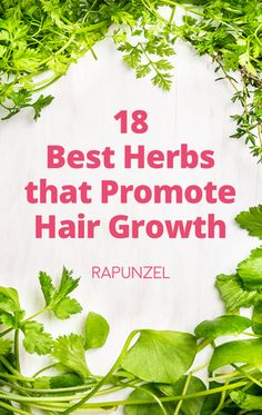 Losing hair? You may just have to turn to Mother Nature for healing! Even before pharmaceutical companies produced hair growth drugs, people from all over the w