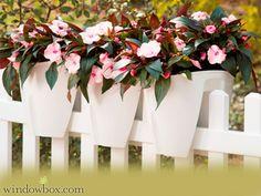 Click Railing Planter - Railing Planter Boxes - Pots & Planters - Windowbox.com
