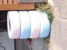 Pastel pink and blue ties in Banff