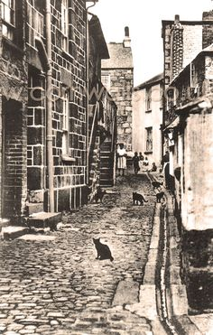 Virgin Street just off Fore Street in St Ives (1920s). I believe the cats may have been superimposed!