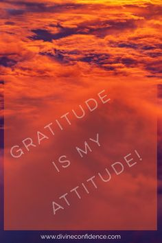 Gratitude is my attitude & it should be yours too! Head to the blog @ www.divineconfidence.com if you need some inspiration 💜