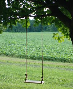 DIY: tree swing