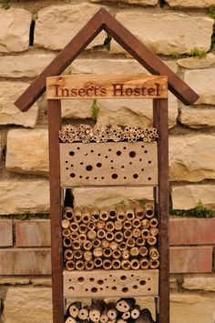 My insects hostel at Bostani Bio Garden