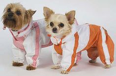 """5.1 Шьем комбинезоны, пальто. - вязание для собак и кошек , свитера, кофты, попоны для собак, комбинезоны, шапочки, обувь для собак, скачать бесплатно книгу Корин Ниснер """"Вяжем для четвероногих модников"""", needleworkdogss Jimdo-Page!"""