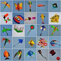 collage of kites