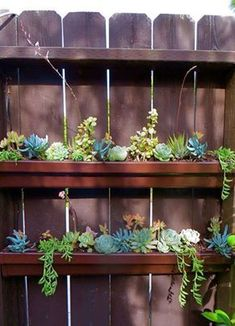 Rain gutters as planters - great idea thank you to whoever created this Garden Shrubs, Succulents Garden, Shade Garden, Garden Landscaping, Landscaping Ideas, Diy Fence, Backyard Fences, Garden Fencing, Fence Ideas