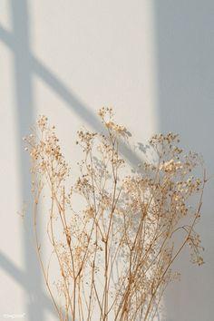 Pin by Vinni on estet | Minimalist wallpaper, Aesthetic iphone wallpaper, Window shadow