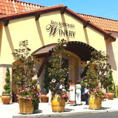 In the Jungles of downtown Los Angeles, San Antonio Winery