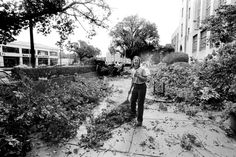 On August 8, 1986, a BU groundskeeper helped clean up tree debris along Commonwealth Avenue caused by a powerful thunder storm the previous day, which had spawned multiple tornadoes in Rhode Island.