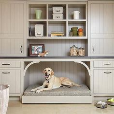 Mudroom with Built In Dog Bed, Cottage, Laundry Room