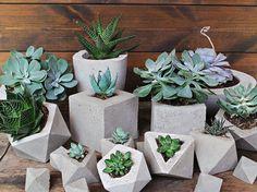 Concrete Planter Geometric Style Handmade by IndustrialRepublic Growing Succulents, Rare Succulents, Succulents Garden, Flowers Garden, Concrete Bowl, Concrete Planters, Diy Hanging Planter, Planter Pots, Succulent Bowls