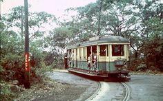 Toastrack tram on the way to Taronga Zoo Light Rail, North Shore, Climbing, Sydney, Entrance, Past, Train, Memories, Led