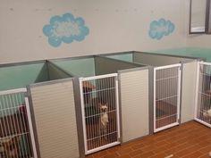 Box da interno per cani piccoli come i Chihuahua, tutto in coibentato e cancelletto verniciato atossico.