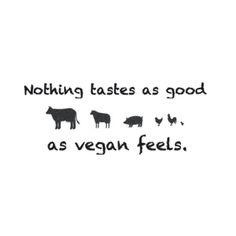 Nothing Tastes As Good As Vegan Feels