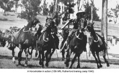 NRL Rutherford Training Camp 1940 - Horse holder in action ( up to 5 horses) . Military Photos, Military History, Mounted Archery, Anzac Day, Modern History, Show Jumping, Horse Breeds, American Civil War, Equestrian