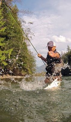 BC Steelhead by Tofino Fish Guides. For more info on fly reels and fly fishing check out www.theflyreelguide.com Don't forget to support and check out the publisher/Pinners of this photo.thx
