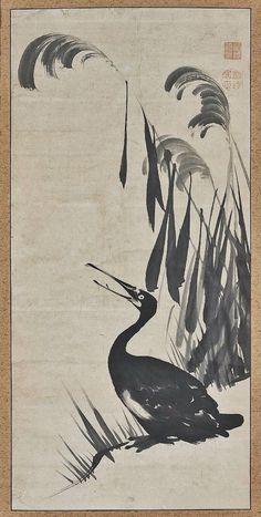 Cormorant in the Reeds. Ito Jakuchu. 18th century. Japan. MFA. Boston.