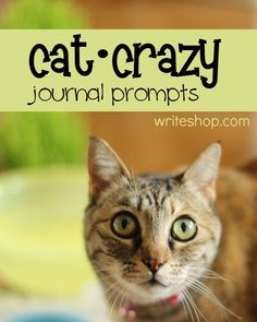 Crazy for Cats Journal Prompts | Tempt your kids to pick up their pencils and have some fun!