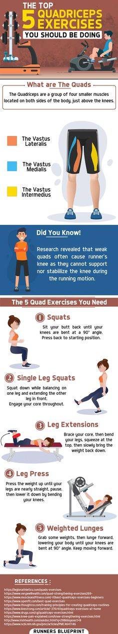The Top 5 Quadriceps Exercises You Should Be Doing — Runners Blueprint, Running For Beginners, Workout For Beginners, Wellness Fitness, Fitness Tips, Quad Strengthening, Quad Muscles, Cardio For Fat Loss, Quad Exercises, Strength Training Program
