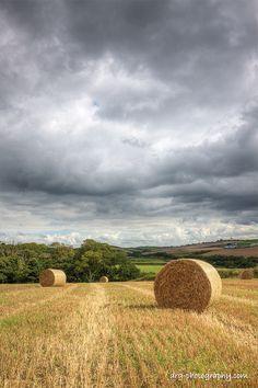Round Hay bales in a North Dakota field... one of my favorite memories