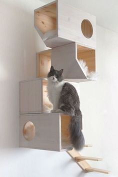 Contemporary Cat Furniture, Niche Chat, Cool Shapes, Cat Playground, Children Playground, Playground Ideas, Cat Shelves, Wood Shelves, Mounted Shelves