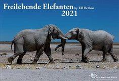 TBFOTO.DE Wandkalender 2022