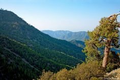 Cyprus Troodos Mountains