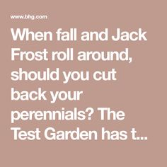 When fall and Jack Frost roll around, should you cut back your perennials? The Test Garden has the answer!