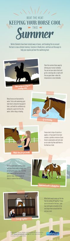 Beat the heat! 5 ways to keep your horse cool and comfortable through the summer heat (infographic). Which will you try?