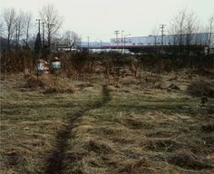 Jeff Wall The Crooked Path 1991
