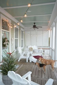 Vigilant emphasized screened porch design straight from the source Beach Cottage Style, Beach Cottage Decor, Coastal Cottage, Coastal Style, Coastal Living, Coastal Homes, Nautical Porch Decor, Coastal Decor, Beach Cottage Rentals