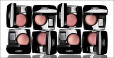 Choix is $20 a month, which includes your choice of 5 makeup products to try and 250 points ($5 credit) every month. Points can be rolled over and do not expire!