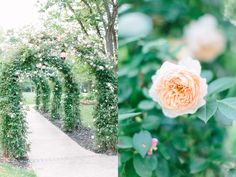 Romantic Garden Moonstone Manor Wedding by Lauren Myers Photography