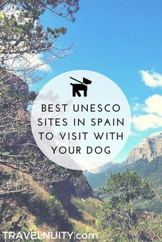 Love history and heading to Spain with your dog? Here's my pick of the 7 best dog-friendly Spanish UNESCO sites to visit.
