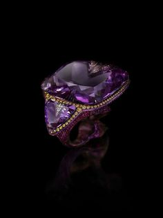 Ring in titanium with amethysts, ruby and diamonds by Wallace Chan.