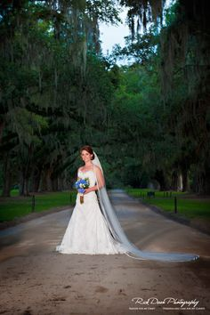 Iconic Charleston Wedding Backdrop: Boone Hall Plantation Avenue of Oaks    source: Rick Dean Photography