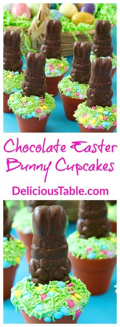 Chocolate EASTER Bunny Cupcakes will delight kids and adults. Bake or buy cupcakes, frost, add green grass sprinkles, and top with a small chocolate bunny!