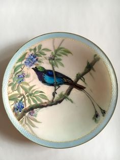 "Gustav Gaudernack design for David Andersen. Gilt silver diish (20cm) with translucent enamel on guilloché ground with enamel painting of caribbean motmot bird  in tropical tree. ""Bermuda ware""?"