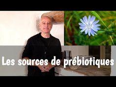 Les prébiotiques : dans quelles plantes en trouver, comment les utiliser ? - YouTube Carrier Oils, Healthy Tips, Natural Remedies, The Cure, Essential Oils, Medicine, How To Apply, Youtube, Spices