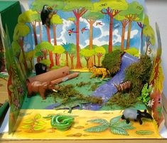how to make a rainforest model for kids - Google Search