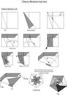 Origami octagonal Box With Lid instructions | Box + Lid