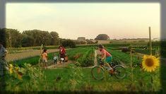 Opnieuw vruchtbare grond voor 't Groente Hart #Crofun #crowdfunding https://www.crofun.be/nl/project/opnieuw-vruchtbare-grond-voor-t-groente-hart#.WmW5XCNx_uQ